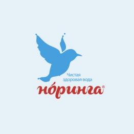 Мобильное приложение для Норинга